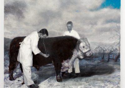 The Sick Bull