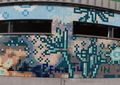 Panorama Ager Medicinae wall East